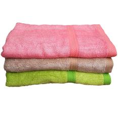 bộ 3 khăn tắm tre TN ( NCX)