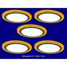 Bộ 5 đèn led nổi ốp trần 24w tròn 2 màu 3 chế độ ánh sáng trắng vàng