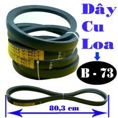 Bộ đôi dây cu loa B73