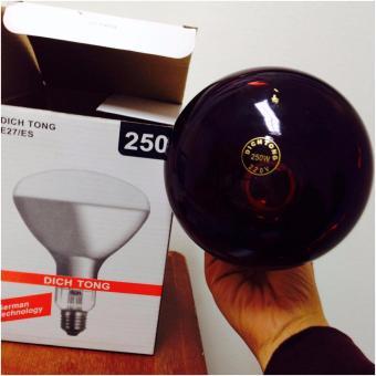 Bóng đèn hồng ngoại Dịch Tông E27/ES 250w(Red)