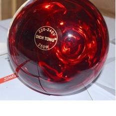 Bóng đèn hồng ngoại DichTong 250W