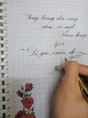 Bút máy luyện chữ LP004