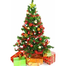Cây Thông Noel (Cao 120cm)
