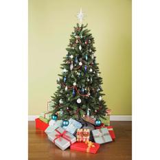 Cây Thông Noel (Cao 210cm)
