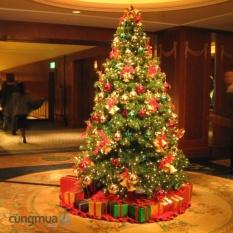 Cây Thông Noel (Cao 240cm)
