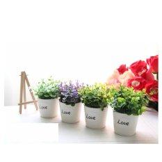 Tư vấn mua Chậu hoa cây xanh tình yêu (giả)