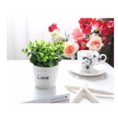 Chậu hoa cây xanh tình yêu giả (xanh)