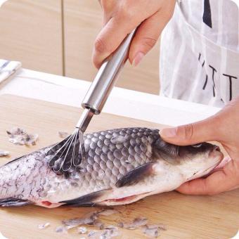 Dao nạo dừa, cạo vảy cá đa năng tiện dụng