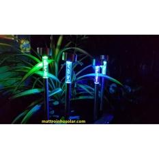 Đèn năng lượng mặt trời đổi màu cắm sân vườn - L1B