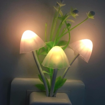 Đèn ngủ avatar hình nấm cảm ứng ánh sáng đổi màu procare