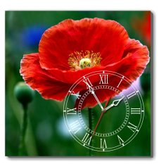 Đồng hồ tranh Hoa đỏ Dyvina 1T4040-100