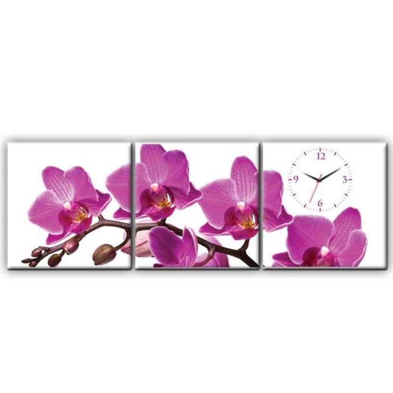 Nơi bán Đồng hồ tranh Nhành Lan Tím Dyvina 3T3030-3