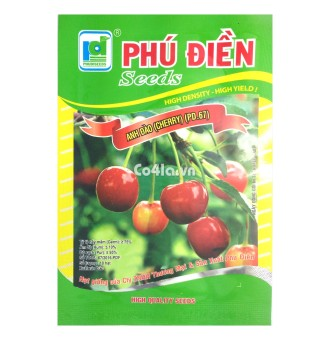 Hạt giống Cherry (Anh đào) (PD.67)