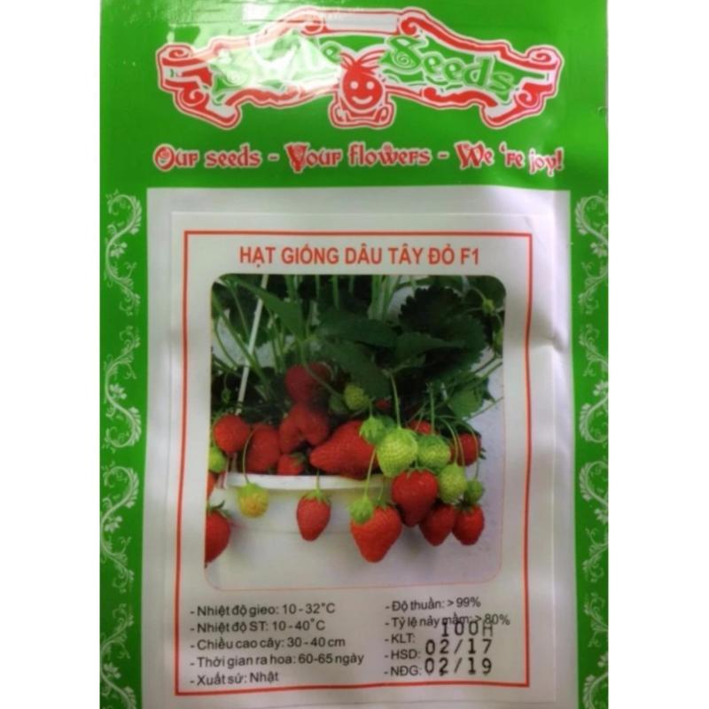 Hạt giống Dâu tây đỏ - Gói 100 hạt - F1 nhập khẩu từ Nhật sai quả
