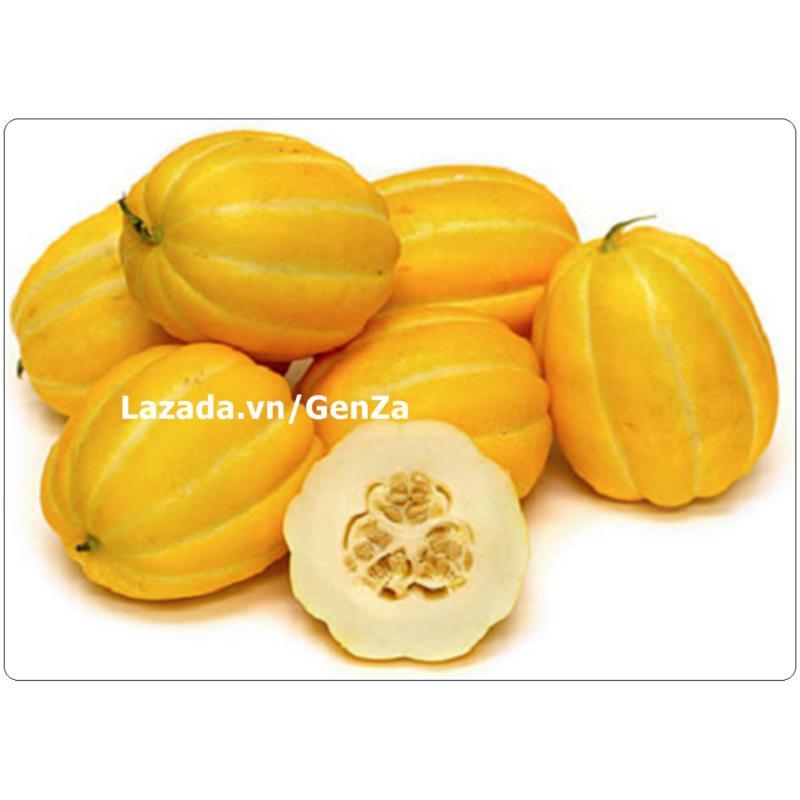 Hạt giống Dưa thơm Hàn Quốc - Giống chất lượng cao, sai quả