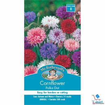Hạt giống hoa Thanh Cúc/Bông Ngô (Cornflower) Mix