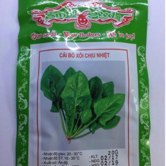 Hạt giống rau cải bó xôi 331HGRE68