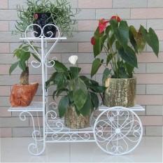 Kệ sắt để chậu hoa , cây cảnh Hình xe đạp