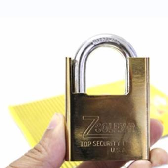 Ổ khóa chống cắt Zsolex thép không gỉ
