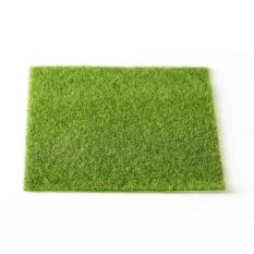Simulation Of Small Lawn Moss Micro-landscape Green Grass Landscape Home Creative Lawn Moss Jewelry Micro Simulation Of Creative Landscape Ecological Lawn, Size: 49 X 70cm - intl