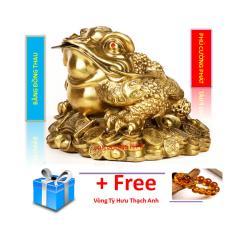 Thiềm Thừ hay cóc 3 chân bé bằng đồng thau nặng 400 g cao 7cm – Phong thuỷ Tài lộc – May mắn – Bình an