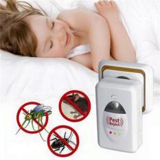 Thiết bị đuổi côn trùng Pest Reject (trắng)