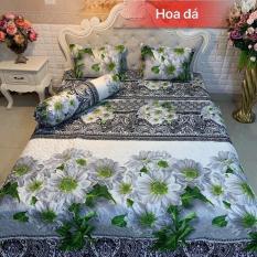 Bộ ga trải giường met 6 mẫu hoa đá