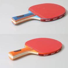 Combo 2 vợt bóng bàn 1066 sản phẩm của Regail