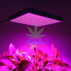 Đèn trồng cây, Led trồng cây GC-45 (45W), chuẩn