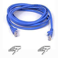 Cáp Mạng UTP Cat 5E Dây Xanh ( Bấm Sẵn 2 Đầu )Cable Lan UTP Cat 5E 3M