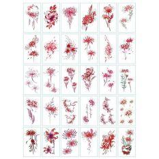 Combo 30 tấm hình xăm dán Hình xăm Hoa Bỉ Ngạn đẹp dễ Thương mẫu BY