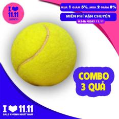 Combo 3 quả bóng tennis dành cho người mới bắt đầu tập luyện môn quần vợt