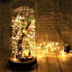 [Tặng Pin] Dây Đèn Led Đom Đóm trang trí tết giáng sinh phòng ngủ Chipsbling Fairy Lights đồng dài 2m, 10m
