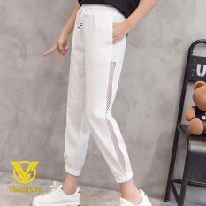 Quần nữ chất đũi phối lưới phong cách Hàn Quốc