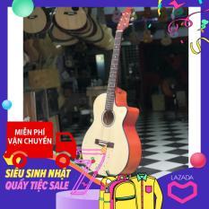 Guitar Acoustic Cho Sinh Viên Gv680