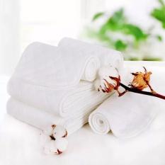 10 Miếng lót ngày và đêm 100% cotton ( dùng cho bỉm tã vải ,nhiều màu)