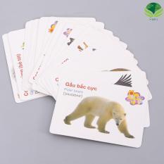Bộ thẻ học anh ngữ và nhận biết đồ vật cho bé ( 416 thẻ )