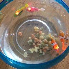 Combo 5 con cá cảnh chạy pin Robo Fish có đèn Led