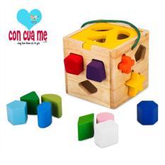 Đồ chơi Giỏ thả 12 khối Winwintoys 62022