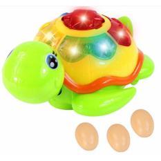 Đồ chơi rùa đẻ trứng, Do choi rua de trúng, Bộ đồ chơi rùa biết biết,đẻ trứng (kèm pin)