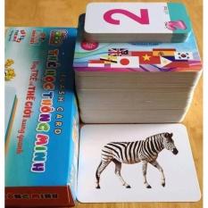 FlashCard – Thẻ học về Thế giới xung quanh (12 chủ đề – Kích thước 12*16cm)