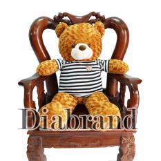 Gấu bông cao cấp Teddy áo thun Benny màu nâu đỏ khổ vải 1m2-TEDDYND1