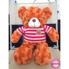 Gấu Bông Teddy Cao Cấp Size 50Cm Vnxk