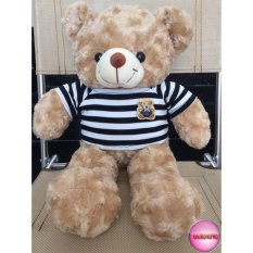 Gấu Bông Teddy Cao Cấp Size 50Cm Vnxk(Kem)