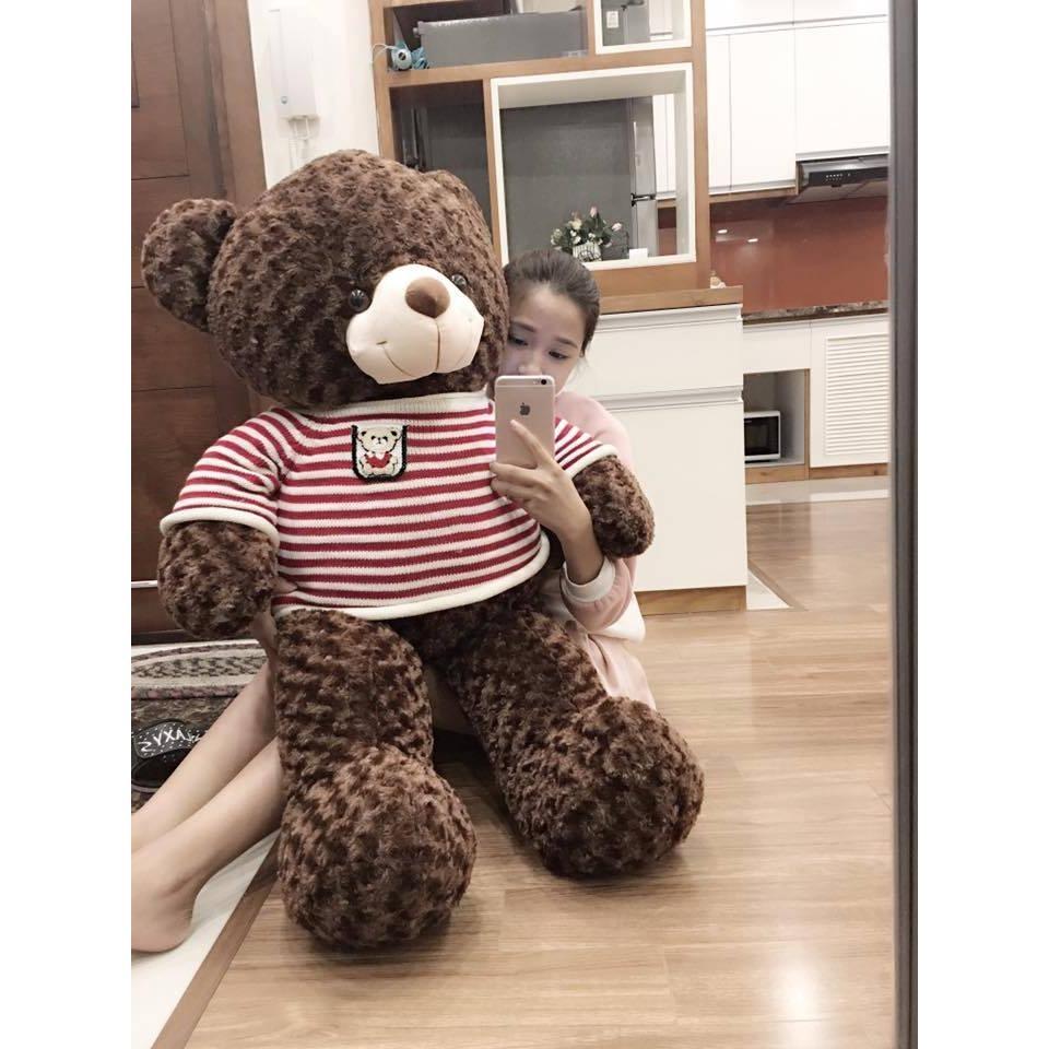 Gấu bông Teddy màu nâu – Khổ vải 1,2m cao 1m VNXK