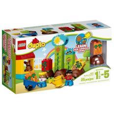 Hộp LEGO Duplo 10819 Khu Vườn Đầu Tiên Của Bé 25 chi tiết