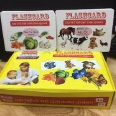 Thẻ học flashcard cho bé 14 chủ đề cho bé yêu(TUAN69)