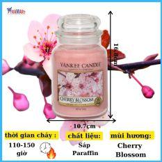 Hũ nến thơm Cherry Blossom Yankee Candle YAN9155 (Size L 623g)