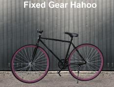 Xe đạp thể thao FIXED GEAR [Hahoo] Hai màu trắng đen tuỳ chọn – Xe đạp sành điệu dành cho người sành điệu