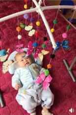 Bướm treo nôi kích thích thị giác trẻ 2 – 6 tháng tuổi